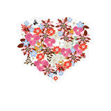 Vector heart illustration Stock Image