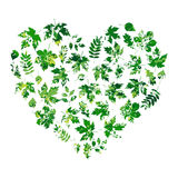 Vector heart made of summer leaves on white background in grunge style Stock Photo