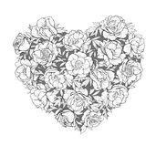 Vector heart of peonies. Vector heart of   peonies on white background Stock Images
