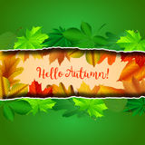 Vector hello autumn background Stock Photos