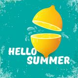 Vector Hello Summer Beach Party Flyer Design template with fresh lemon isolated on azure or torquoise background. Hello. Vector Hello Summer Beach Party Flyer Royalty Free Stock Photography