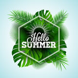 Vector Hello Summer typographic illustration with tropical plants on light blue background. Royalty Free Stock Images