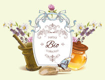 Vector herbal banner. With mortar,honey,wild flowers and herbs. Design for herbal tea, natural cosmetics, health care products, homeopathy, aromatherapy. With Royalty Free Stock Photo