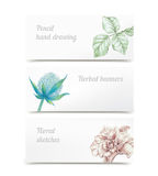 Vector herbal banners Stock Image