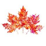 Vector Herbst farbige Ahornblätter auf weißem Hintergrund in der Schmutzart Lizenzfreies Stockfoto