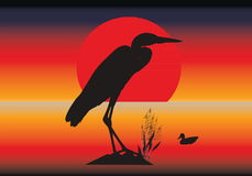 Vector heron silhouette. Vector silhouettes of heron and duck against an abstract background stock illustration
