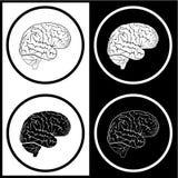 Vector hersenenpictogrammen royalty-vrije illustratie