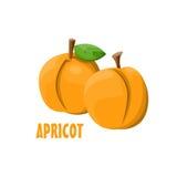 Vector het landbouwbedrijfontwerp van Logo Apricot Royalty-vrije Stock Fotografie