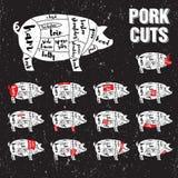 Vector het Malplaatjereeks van varkensvleesbesnoeiingen Royalty-vrije Stock Foto