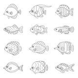 Vector het pictogram vastgestelde tropisch van het vissenoverzicht, marien, oceanic royalty-vrije illustratie