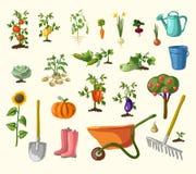 Vector het tuinieren reeks Stock Foto's