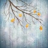Vector het weer artistiek natuurlijk ontwerp van de de herfstregen stock illustratie