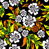 Vector hibiscus Royalty-vrije Stock Foto
