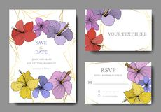 Vector Hibiscus floral tropical flowers. Engraved ink art. Wedding background card floral decorative border. stock illustration