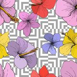 Vector Hibiscus floral tropical flowers. Engraved ink art on white background. Seamless background pattern. vector illustration