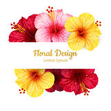 Vector hibiscus flower. invitation card. Royalty Free Stock Image
