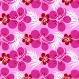 Vector hibiscus op roze Royalty-vrije Stock Afbeeldingen