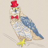 Vector hipster bird Rough-legged Buzzard. Funny cartoon hipster  bird Rough-legged Buzzard in a red hat, glasses and bow tie Stock Photo