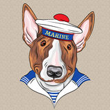 Vector hipster dog Bullterrier sailor Stock Photography