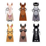 Vector hipster horse head in glasses ,bow. Flat cartoon style Royalty Free Stock Photo