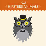 Vector Hipster Owl greeting card design Royalty Free Stock Image