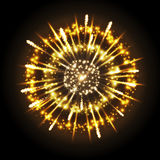Vector holiday firework. Vector festival holiday firework on black background Stock Photos