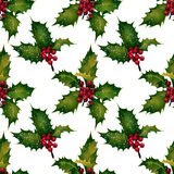 Vector holly - seamless pattern Royalty Free Stock Photography