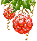 Vector holly in the shape of Christmas balls. Christmas and New Year background. Vector holly in the shape of Xmas ball and golden ribbon Stock Photo
