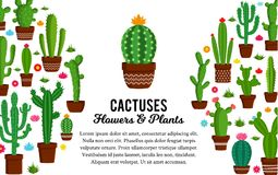 Vector cactus illustration. Vector home cactus illustration. Different types of cactus plants in flowerpots with flowers and grass icons Stock Image