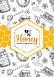 Vector honey bee hand drawn illustrations.  Honey banner, poster Stock Photo