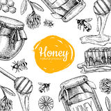 Vector honey bee hand drawn illustrations.  Honey banner, poster Stock Image
