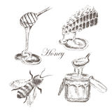 Vector honey, honeycells, honeystick, bee Stock Images