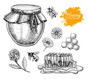 Vector honey set. Vintage hand drawn illustration. Royalty Free Stock Image