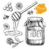 Vector honey set. Vintage hand drawn illustration. Royalty Free Stock Images