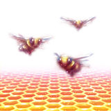 Vector honeycomb background with three bees Royalty Free Stock Photography
