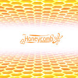 Vector honeycomb background from yellow to white Royalty Free Stock Photography