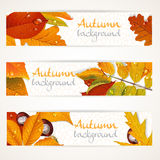 Vector horizontal autumn leaves banners Royalty Free Stock Photography