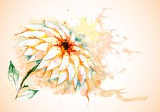 Vector horizontal background with Lily flower Stock Image