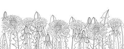 Vector horizontal border with outline Dandelion flower, bud  Stock Images