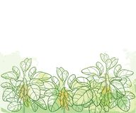 Vector horizontal bunch with outline Soybean or Soy bean with pods and ornate leaf in pastel green on the textured background. vector illustration