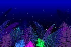 Vector horizontal composition of outline fossil forest plant Fern with frond on the black background. Drawing of magic forest. Vector horizontal composition of stock illustration