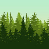 Vector horizontal seamless background with green pine or fir-tree forest. Nature background with evergreen trees. Stock Photography