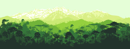 Vector horizontal seamless tropical Jungle with mountains background. Vector horizontal seamless tropical rainforest Jungle with mountains background