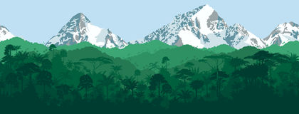 Vector horizontal seamless tropical Jungle with mountains background Royalty Free Stock Photography