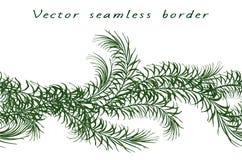 Vector horizontale naadloze grens van tropische groene palmbladen stock illustratie
