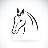 Vector of a horse head on white background. Animal Stock Images