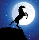 vector horse on top of the mountain and a moon Royalty Free Stock Photos