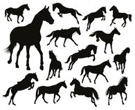 Vector horses set Stock Photo