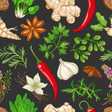 Vector hot pattern with herbs on dark Stock Image