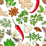 Vector hot pattern with herbs on white Royalty Free Stock Image
